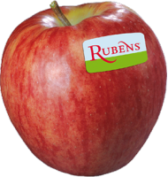 Rubens Apple