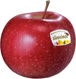 Morgenduft apple