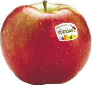 Idared apple